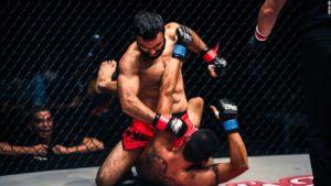 Arti marziali esterne MMA